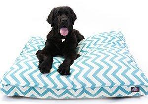 Comfy & Colorful: Pet Beds
