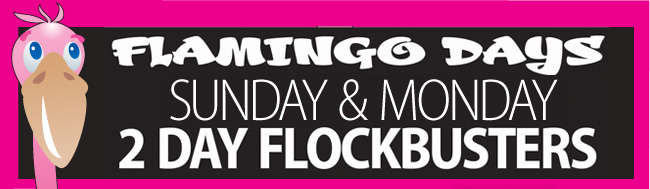 Flamingo Days Continue with 2 day Flockbusters