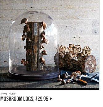 EXCLUSIVE - MUSHROOM LOGS, $29.95