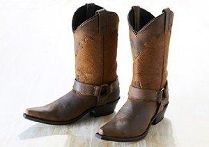 Urban Cowgirl: Boots ft. Dan Post