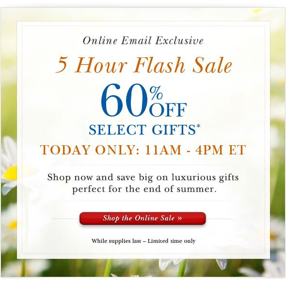 5 hour Online Flash Sale. Shop Now.