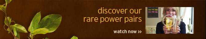 discoaver rare power pairs watch now
