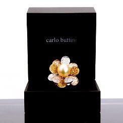 Carlo Buttini