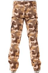 The Delancy Cargo Pants in Desert Spray Camo