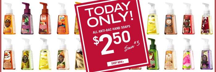 Anti-Bac Hand Soaps – $2.50