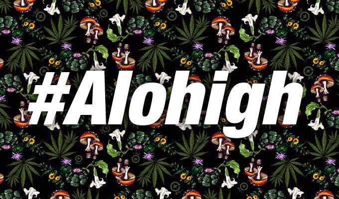 Alohigh