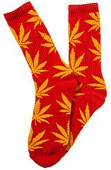 The Plantlife Socks in Red and Yellow