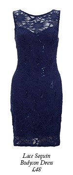 Lace Sequin Bodycon Dress