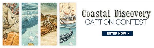 COASTAL DISCOVERY CAPTION CONTEST