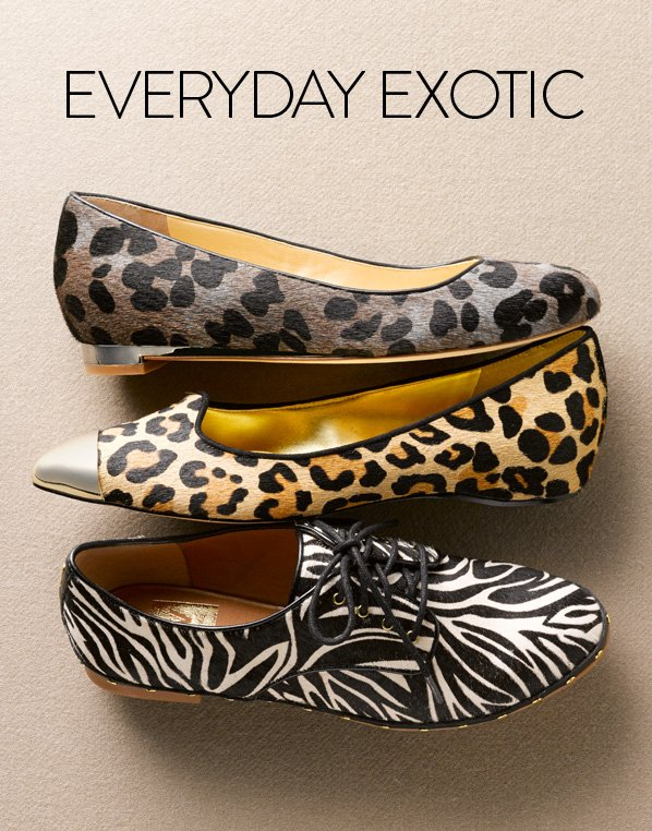 EVERYDAY EXOTIC