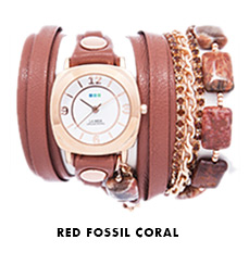 Red Fossil Coral