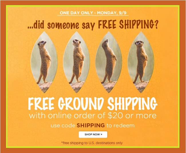 ONE DAY ONLY - Monday 9/9 					Free Ground Shipping* 					With Online Order of $20 or More 					Use code SHIPPING to redeem 					*Free shipping to U.S. destinations only. 					Shop online at www.papyrusonline.com