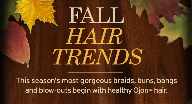 FLL  HAIR TRENDS This season s most gorgeous braids buns bangs and blow outs  begin with healthy Ojon hair