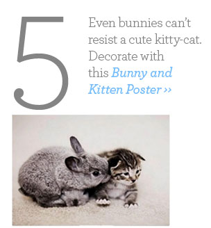 Bunny and Kitten Poster