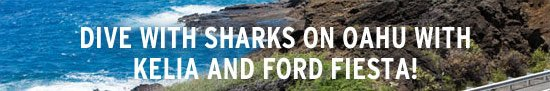 Dive with sharks on Oahu with Kelia and Ford Fiesta!