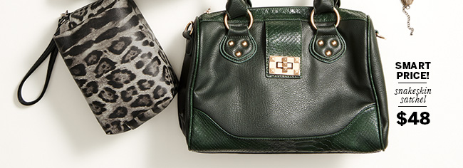 Smart price! Snakeskin satchel $48
