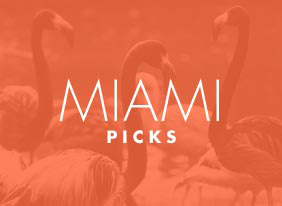 Miami_picks_hero_hep_two_up