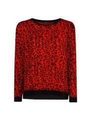 3-leopard-print