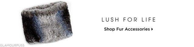 Shop Fur Accessories