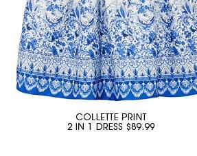 COLLETTE PRINT DRESS