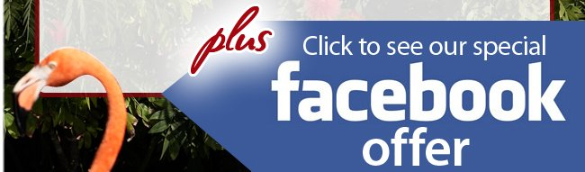 Click to See our Special Facebook Offer