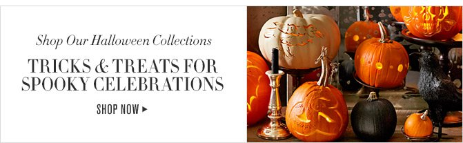 Shop Our Halloween Collections - TRICKS & TREATS FOR SPOOKY CELEBRATIONS - SHOP NOW
