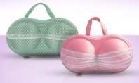 First Class Bra Cases | Shop Now