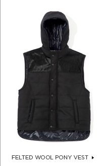 Felted Wool Pony Vest