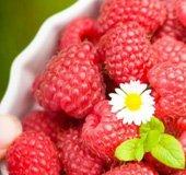 Raspberries_NLsm