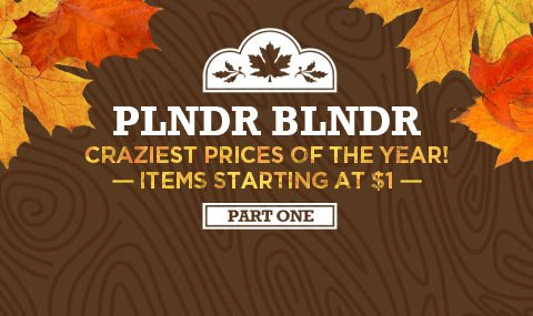 The PLNDR BLNDR is here. Kick off fall in style and shop items starting at $1.