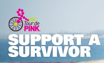 SUPPORT A SURVIVOR