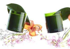 DayNa Decker Home Fragrance