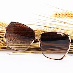 Luxury Sunglasses For Her by Dior, Gucci, YSL & More