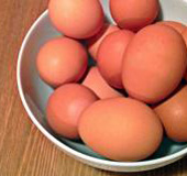 Eggs_BD_NLsm