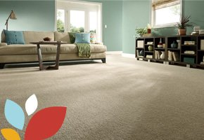 Living Room With STAINMASTER® Carpet