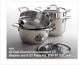 NEW - All-Clad Gourmet Accessories 5 QT Steamer and 6 QT Pasta Pot, $99.95 each