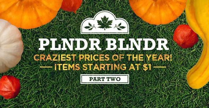 PLNDR BLNDR, Pt. 2