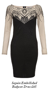 Long Sleeve Sequin Embellished Bodycon Dress