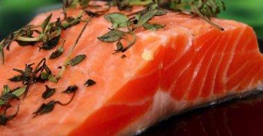 Salmon_NL