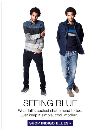 SEEING BLUE | SHOP INDIGO BLUES