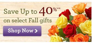 Get $25 Off* truly original flowers & gifts when you pay with V.me by Visa. Promo Code VME24