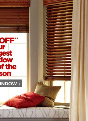 SHOP WINDOW ›
