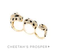 CHEETAH-S-PROSPER