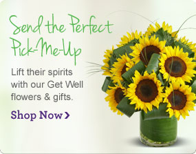 Send the Perfect Pick-Me-Up Lift their spirits with our Get Well flowers & gifts.