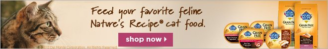 Feed your favorite feline Nature's Recipe cat food