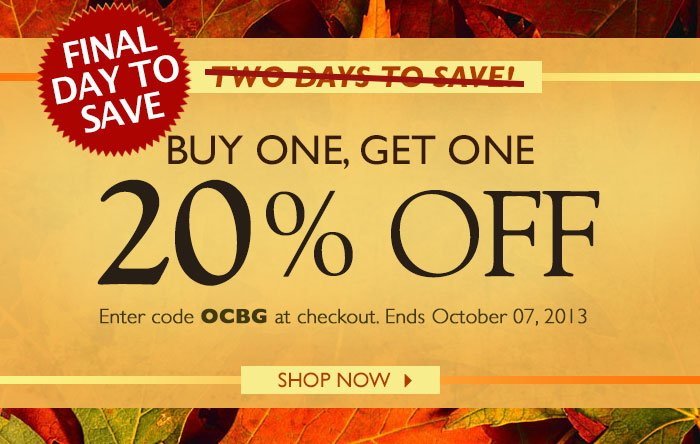 Buy One Get One 20% off