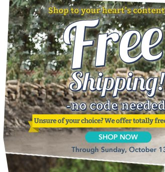 Shop to your heart's content with FREE SHIPPING!