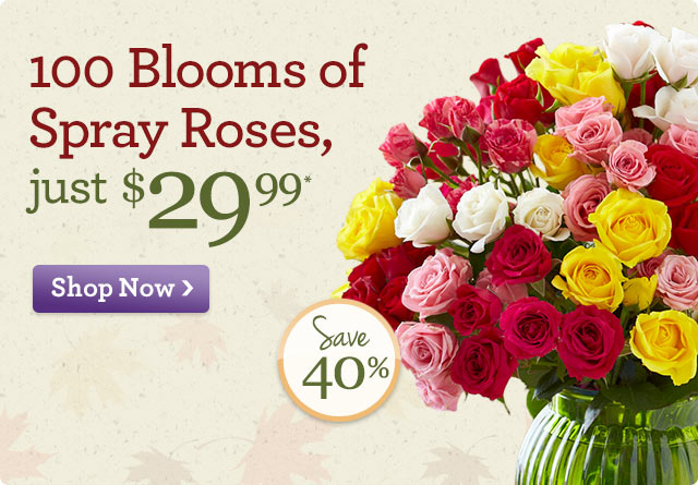 100 Blooms of Spray Roses Just $29.99* Save 40%!  Shop Now