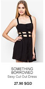 SOMETHING BORROWED Sexy Cut Out Dress