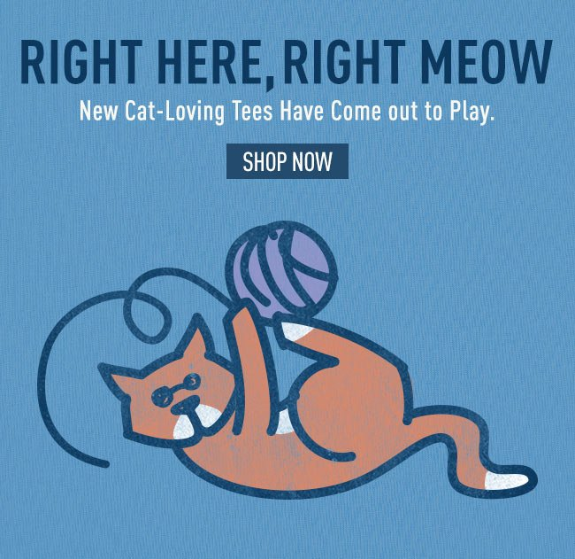 Shop the All New Cat Collection for Life is good